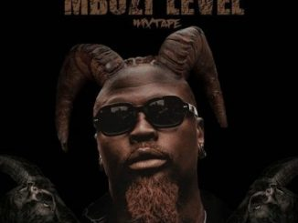 EP: Stilo Magolide – Mbuzi Level Zip Download 2020