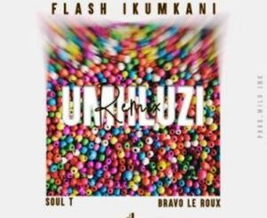 Flash iKumkani mhluzi Remix Mp3 Download Fakaza