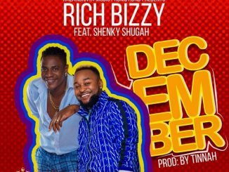 "Rich Bizzy ft. Shenky – ""December"" Mp3 Download"